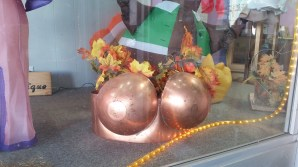A copper bra at a lingerie store downtown.